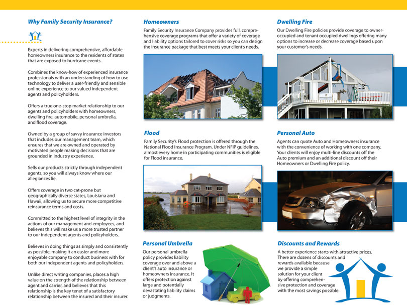 Trifold Brochure for FSI designed by D2 Studios Graphic Communications in NJ